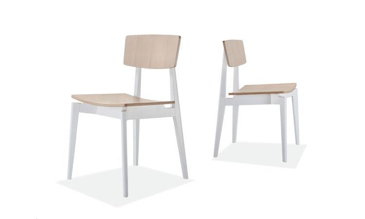 Sedia ristorante in legno di faggio modello Fifty