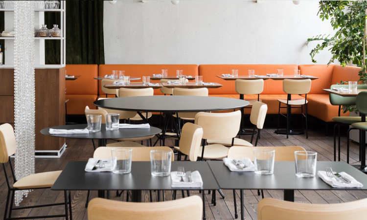 Master, sedia ristorante per interni in legno e acciaio